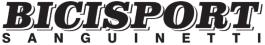 Logo Bici Sport Sanguinetti