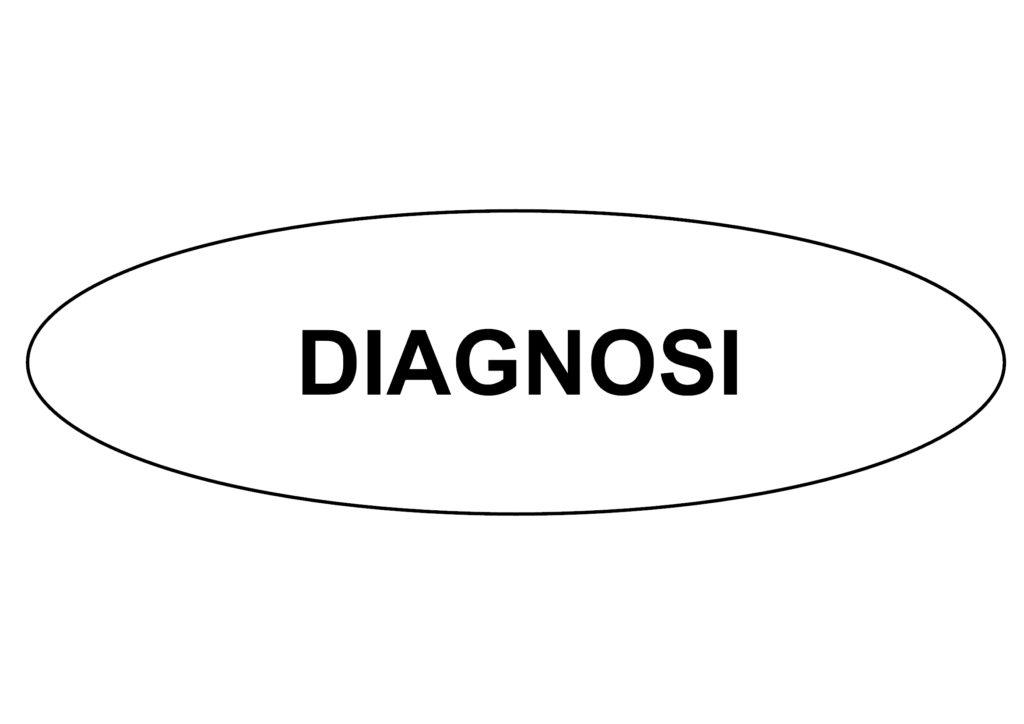 DIAGNOSI-1024x724 DIAGNOSTIC TOOL